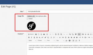 VichUploaderBundle – upload plików i obrazów
